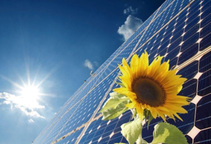Zonnepanelen geplaatst nav subsidie Gemeente Ommen